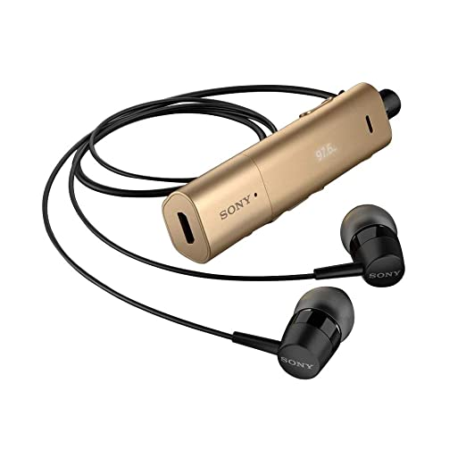 5460f869f29 Sony Stereo Bluetooth Headset, Gold - SBH54: Amazon.ae: TechOnlineStore