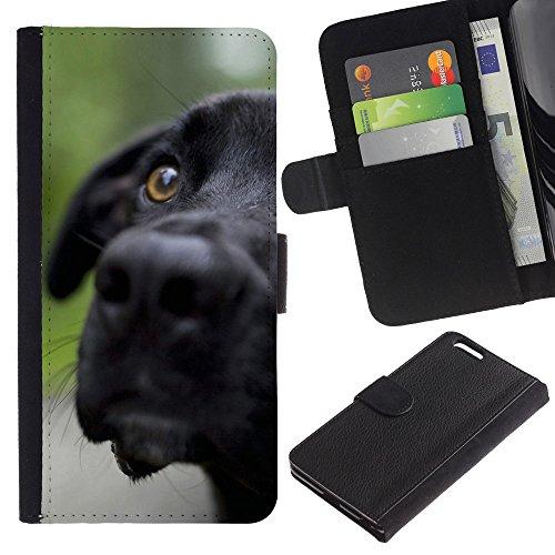LASTONE PHONE CASE / Luxe Cuir Portefeuille Housse Fente pour Carte Coque Flip Étui de Protection pour Apple Iphone 6 PLUS 5.5 / Black Labrador Retriever Muzzle Dog Pet