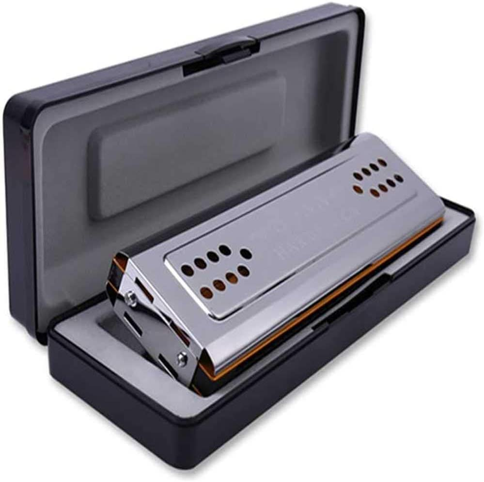 24-Hole Double-Sided Harmonica Adult Child Beginner Playing Instrument Gift ZZLQIAN C/&G Chord Harmonica