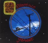 Electric Forest by PROGROCK RECORDS