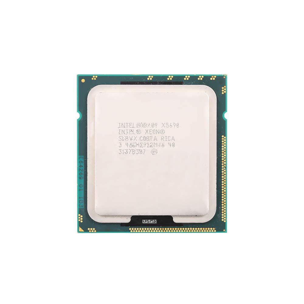 Usato//Usato Festnight Processore Intel/® Xeon/® X5690 12 M Cache 3,46 GHz 6,40 GT//s Intel/® QPI