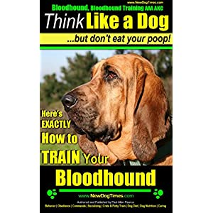 Bloodhound, Bloodhound Training AAA AKC: |Think Like a Dog, But Don't Eat Your Poop! | Bloodhound Breed Expert Training |: Here's EXACTLY How to Train Your Bloodhound 2