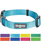 """Blueberry Pet 8 Colors Classic Dog Collar, Medium Turquoise, Small, Neck 12""""-16"""", Nylon Collars for Dogs"""