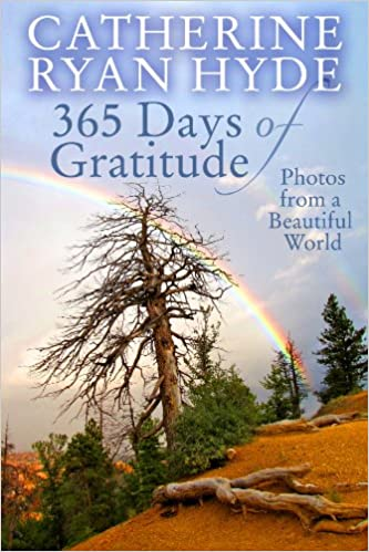 Descargar libros electrónicos gratis365 Days of Gratitude: Photos from a Beautiful World B00JPSS208 en español MOBI by Catherine Ryan Hyde