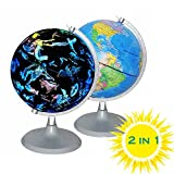 CYHO Illuminated World Globe - USB 2 in 1 LED Desktop World Globe, Night View Stars and Constellations Globe for Kids Adults, Ideal Educational Geographic Learning Toy (G-1)