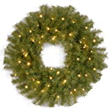 National Tree 24inch Norwood Fir Wreath With Warm White LED Lights (Small image)