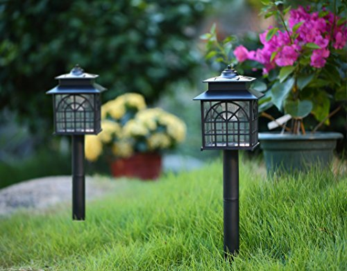 Twinkle star led solar pathway lights outdoor solar landscape lights twinkle star led solar pathway lights outdoor solar landscape lights weather resistant solar lights aloadofball Image collections