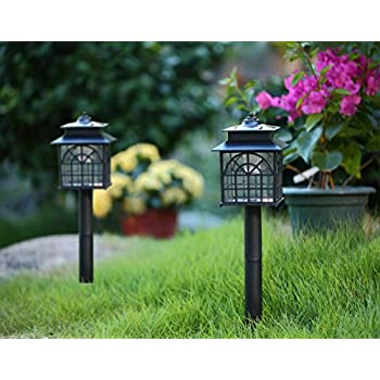 twinkle star led solar pathway lights outdoor solar landscape lights solar lights 2 pack
