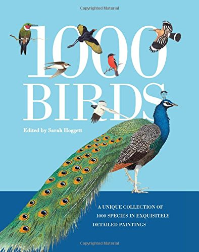 1000 Birds: A Unique Collection of 1,000 Species in Exquisitely Detailed Paintings