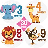 "30 Pack! New 2017 Design! Limited Time Sale! Original Stick'Nsnap (TM) Baby monthly round 4"" Stickers - ""Happy Animals and Rainbows"" (TM). Great Baby Shower Gift!"
