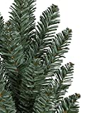 Balsam Hill Classic Blue Spruce Artificial
