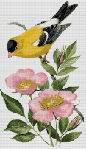 Iowa State Bird (Eastern Goldfinch) and Flower (Wild Prairie Rose) Counted Cross Stitch Pattern