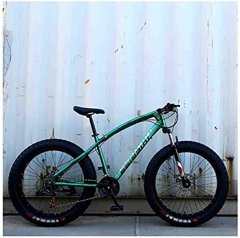 RYP Bicicleta para Joven Bicicletas De Carretera Montaña de la Bicicleta MTB Adulto Agua Motos de Nieve Bicicletas for Hombres y Mujeres 24IN Ruedas Ajustables Velocidad Doble Freno de Disco: Amazon.es: Hogar