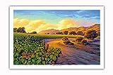 Pacifica Island Art - Vineyard Sunset - Wine