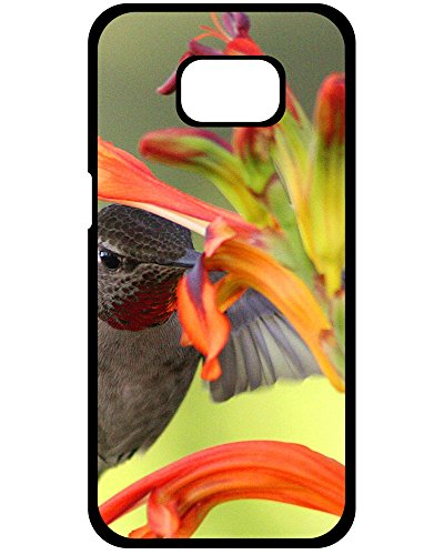 (DKLZY New Arrival Hard Plastic Case Cover With Hummingbird Samsung Galaxy S8+ Plus Phone Hard Plastic Case)