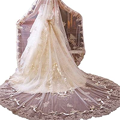 Newdeve Champagne 3M 1T Bridal Veils Lace Edge Long Hair Falls