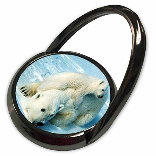 Playful Polar Bear (3dRose Florene Animals - Playful Polar Bear n Her Mom.jpg - Phone Ring (phr_98619_1))