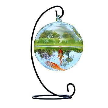 Para Colgante De Cristal Peces Bowl Acuario Tanque De Decoración Para El Hogar Redonda (12CM): Amazon.es: Hogar