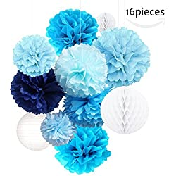 Tissue Paper Flowers Pom Poms Decorations - Bright Colorful Large Rainbow Craft Assorted Bulk Kit Hanging Wall for Big Wedding Birthday Party Decor (13 Pack)