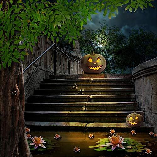 LFEEY 8x8ft Fantasy Halloween Photography Backdrops Horror Night Jack O Lantern Old Stone Steps Lotus Water Lily Lake Pumpkin Face Photo Background Cloth Photo Studio Props