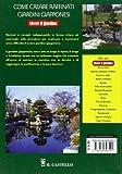 Image de Come creare raffinati giardini giapponesi
