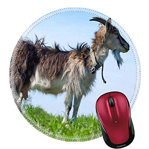 Price comparison product image Liili Round Mouse Pad Natural Rubber Mousepad Goat on a green lush meadow Photo 20329024