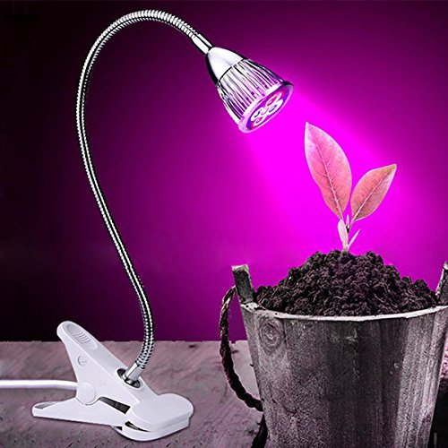 Top 5 Best Led Grow Lights