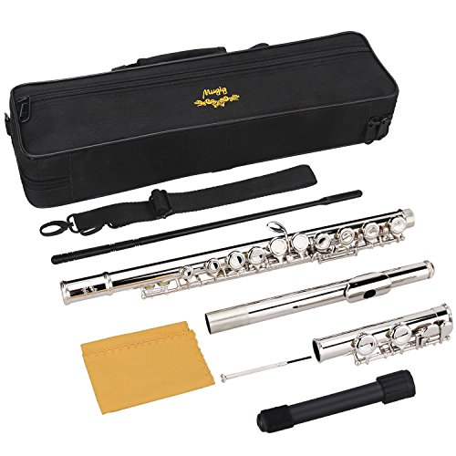 Mugig Flute, Flute Set with Stand, Closed Hole C Flute with 16 Keys, Standard Tone, Instrument Gift for Beginner...