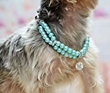 PETFAVORITES Luxury 2 Row Pearls Rhinestones Pet