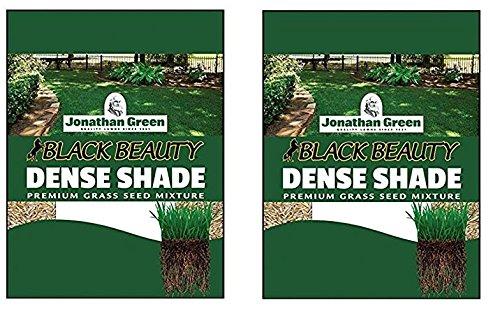 Jonathan Green 10622 Dense Shade Grass Seed Mix, 1 Pounds (2 Pack)