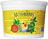 LAFEBER'S Classic Nutri-Berries Cockatiel Food 4 lb