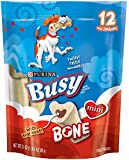 Purina Busy Bone Mini Dog Treats