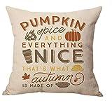 Home Decor Cotton Linen Pillow Covers 18x18,MFGNEH Pumpkin Spice Throw Pillow Case Cushion Cover for Sofa