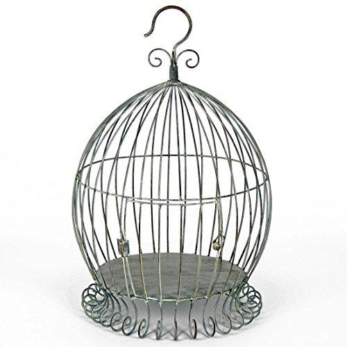 Thats Original Originals Jaula para pájaros para Plantas: Amazon ...