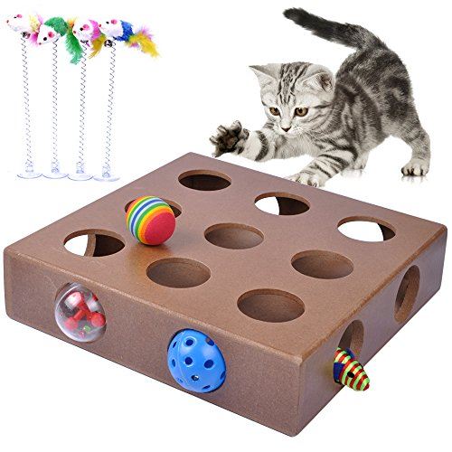 MyfatBOSS Best Cat Toys, Interactive Cat Toy Puzzle Box, Kitty Indoor Feather Toys Cats,Cat Playing Balls ()