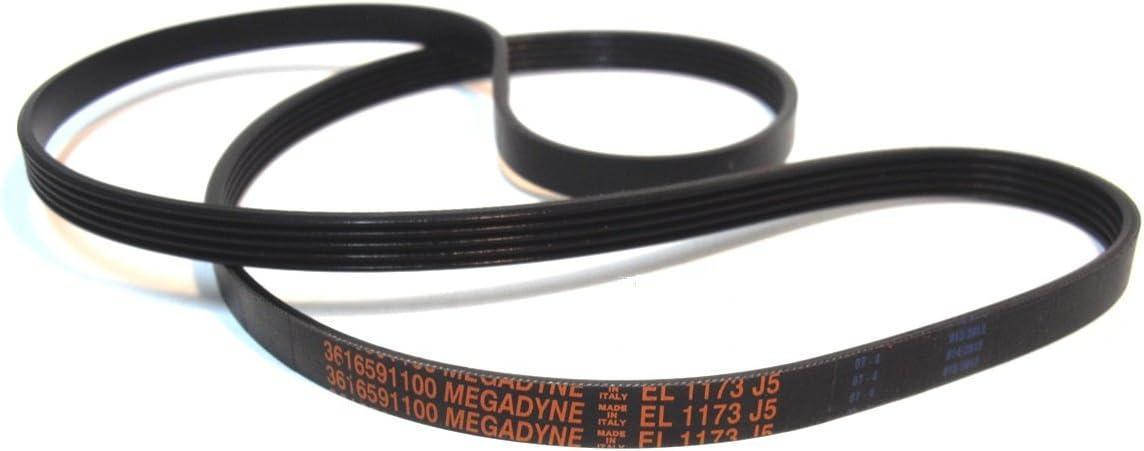 Megadyne - Correa de lavadora EL 1173 J5 (3616591100): Amazon.es ...