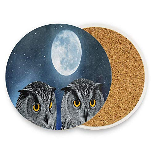 BeautyToiletLidCoverABC Fantastic Eagle Owls Under the Night Sky with Moon Stars Coaster for Drinks, Ceramic Round Cork Trivet Heat Resistant Hot Pads Table Cup Mat Coaster Pack Of 1