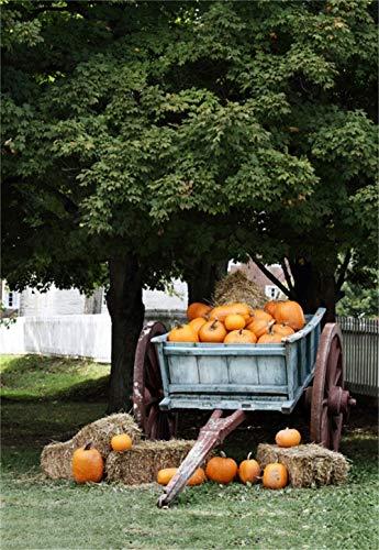 Laeacco 5x7FT Vinyl Backdrop Photography Background Orange Pumpkins Wagon Under Shady Oak Tree for Sale Autumn Harvest Nature Background Boys Cowboy Adults Portraits Backdrop Adult Halloween ()