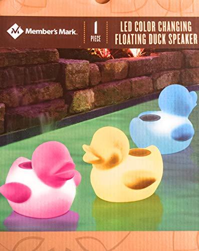 LED Duck Color Changing Floating Speaker