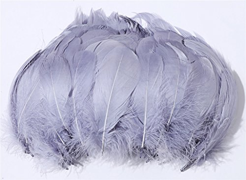 PANAX 100 Pieces DIY Craft Goose Feathers Slight Bending Feathers 8-12cm/ 3-5 Inches Lengh, Ideal for Carnival, Halloween, Crafts, Handwerk, DIY, Clothing, Costumes -