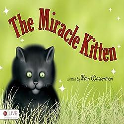 The Miracle Kitten