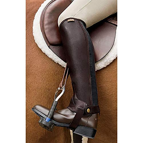 Saxon. Equileather Half Chaps Adults, Horseback Riding Boots Protective Gear