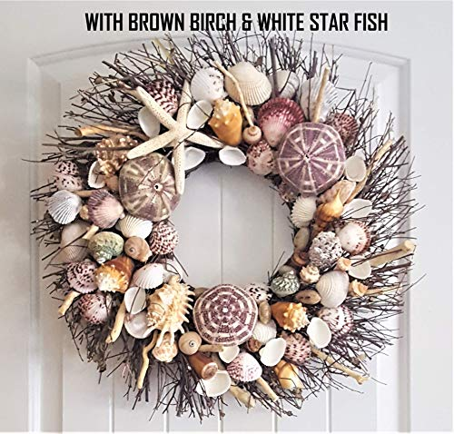 "21"" Sea Shell Wreath on Birch Twig with Exotic Sea Urchins in 5 Designs"