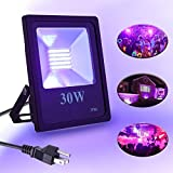 UV Black Light, Elfeland UV LED Flood Lights IP66 Waterproof Blacklight 30W Ultra Violet Stage Lighting for Blacklight Party Supplies, Neon Glow, Body Paint, Fluorescent Poster (85V-265V AC)