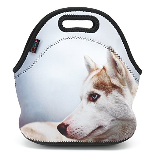 ICOLOR Thermal Neoprene Waterproof Kids Insulated Lunch Portable Carry Tote Picnic Storage Bag Lunch box Food Bag Gourmet Handbag Cooler warm Pouch Tote bag For School work Office (Cool Wolf) F-LB-83