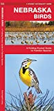 Nebraska Birds: A Folding Pocket Guide to Familiar Species (Wildlife and Nature Identification)