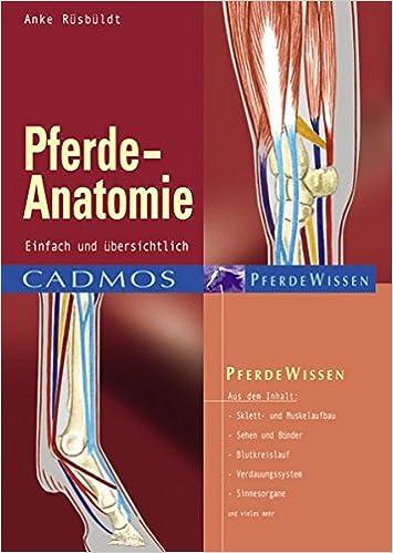 Pferde-Anatomie: Anke Rüsbüldt: 9783861272847: Amazon.com: Books