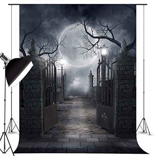 FIVEWARE 5x7FT Halloween Photo Backdrop Cloth Gothic Photography Background for Halloween Party Decorations Studio Photo Props BD1840