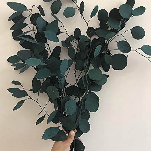 TRvancat Preserved Eucalyptus Branches 22inch, Dried Eucalyptus Leaves for Garland Flower Arrangement Wedding Home Decor ((Blue)