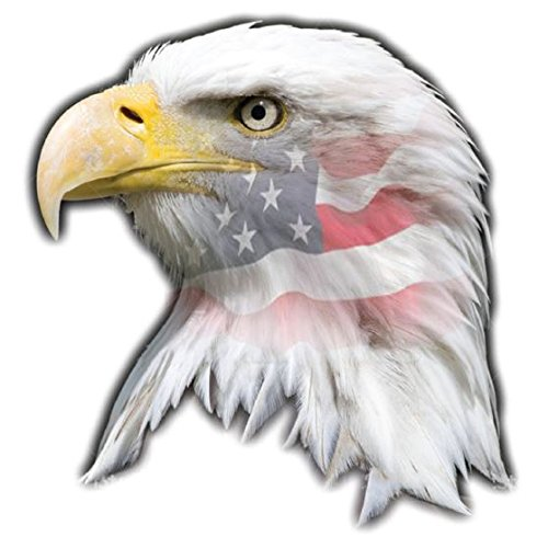 Head Car Magnet - U.S. American Flag Eagle Head Magnet 5